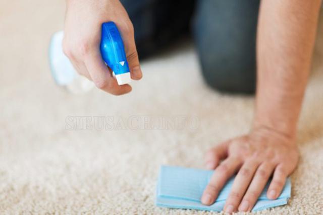 Xịt giấm trắng để hút bụi thảm bằng tay nhanh chóng