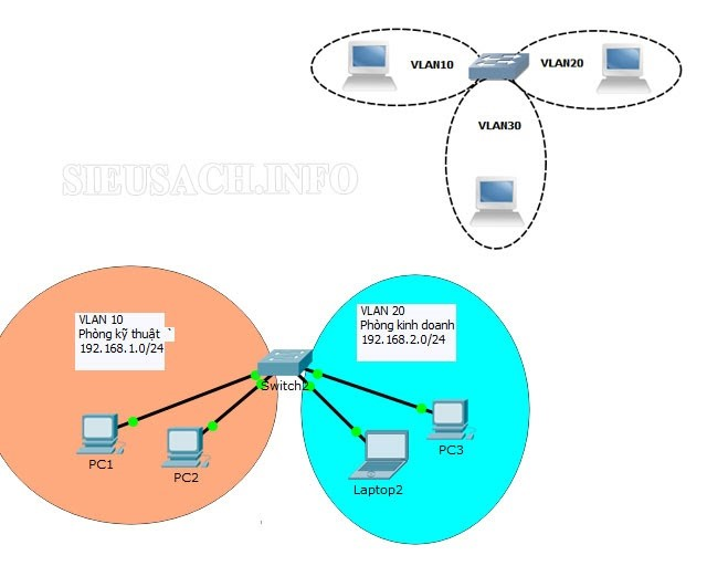 Có những loại VLAN nào?